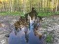 Еловый (приток Егута) 3.jpg