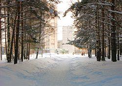 Зимнее утро в Радужном.jpg