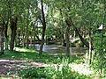 Коропецький парк 1.jpg