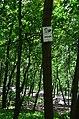 Парк Берёзовая роща в Киеве. Фото 27.jpg