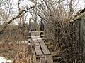 Подвесной мост - panoramio - TurboMакс.jpg
