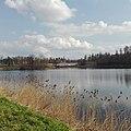 Приоратский парк.jpg