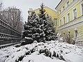 Снег выпал 8января2020.jpg