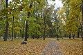 Центральний парк міста Ромни.jpg