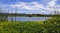 المحمية الطبيعية بني بلعيد ولاية جيجل.jpg