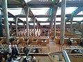 مكتبة اسكندرية 02.jpg