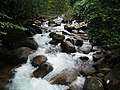 อุทยานแห่งชาติน้ำตกพลิ้ว จ.จันทบุรี (23).jpg