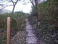 うつぶな公園 - panoramio (20).jpg