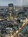 六本木ヒルズ大展望台 東京シティビュー - panoramio (38).jpg