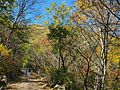 华彩步道 - Gorgeous Trail - 2012.09 - panoramio.jpg
