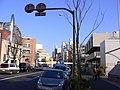旧山手通り - panoramio (2).jpg