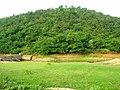 昭关镇乌龟山东北侧的水坝、山林 - panoramio.jpg