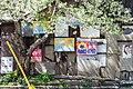 桜マルフク (39569868980).jpg