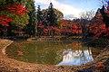 永保寺庭園 - panoramio.jpg