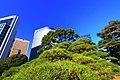 浜離宮 - panoramio (5).jpg