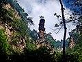 湖南 张家界 金鞭溪 - panoramio.jpg
