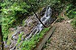 白岩の滝 - panoramio (35).jpg