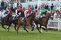 022 Epsom Derby Day 2015 - Coronation Cup - the field turning for home (18401608720).jpg