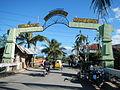 0806jfLandscapes Welcome Vegetables Roads Binagbag Angat Bulacanfvf 14.JPG