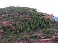 133 L'Areny des de l'ermita de Sant Ramon (Mont-roig del Camp).JPG