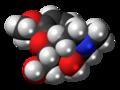 14-Hydroxydihydrocodeine molecule spacefill.png