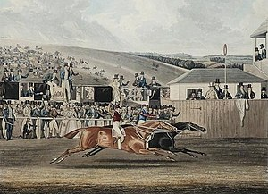 Cadland - Cadland beats The Colonel in the deciding heat of the 1828 Derby as depicted in an aquatint by James Pollard.