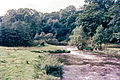 1968 River Goyt, Furness Vale.jpg