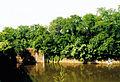 20010524 Maastricht; Zuid-Willemsvaart.jpg