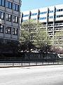 2010 Government Center Boston 45.jpg