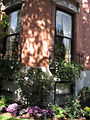 2011 windowbox CommonwealthAve BackBay BostonMA September IMG 3775.jpg