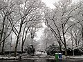 2013 Fort Tryon Park main entrance at Margaret Corbin Circle in snow.jpg