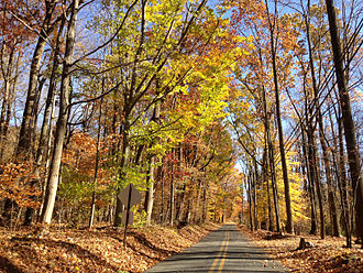 Hopewell Township, Mercer County, New Jersey - Woosamonsa Road in Hopewell during autumn