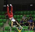 2019-06-27 1st FIG Artistic Gymnastics JWCH Men's All-around competition Subdivision 4 Horizontal bar (Martin Rulsch) 235.jpg