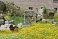 20190505 147archaia korinthos.jpg