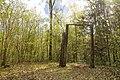 2019 05 Riežupes dabas parks (7).jpg
