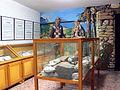 225-Museo Esino sala dei Celti.jpg