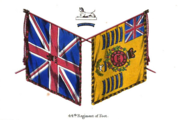 44th Foot Colours.png