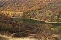68-224-5047 Китайгородський ліс.jpg