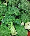 69 - broccoli.jpg