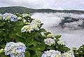 Açores 2010-07-23 (5154698413).jpg