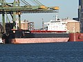 AP Argosy (ship, 2012) IMO 9511258, Mississippihaven, Port of Rotterdam pic2.JPG