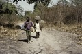 ASC Leiden - Coutinho Collection - C 38 - Walk from Candjambary to Sara, Guinea-Bissau - Luggage carriers during walking trip - 1974.tif