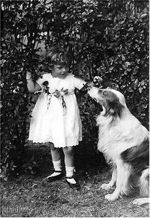 A Dog's Love - Image: A Dog's Love