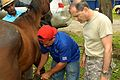 A Panamanian resident shows his horse's hoof to U.S. Army Capt. John Turco, a veterinarian with the 719th Medical Detachment Veterinary Services based in Fort Sheridan, Ill., during an examination in Cantina 052913-Z-PQ189-0543.jpg