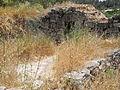 A Shomera near Ein Handek 3.JPG