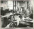 A Sydney butchers, 1900 (3100789785).jpg