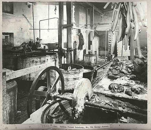 A Sydney butchers, 1900 (3100789785)