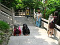 A picture from China every day 159.jpg