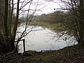 A small woodland lake - geograph.org.uk - 1112365.jpg