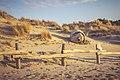 Abbandono delle Dune di Tirrenia.jpg